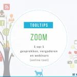 Tooltip Zoom